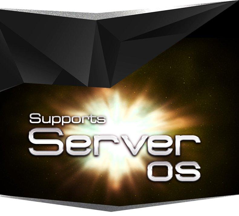 100-1-SupportsServerOS.jpg